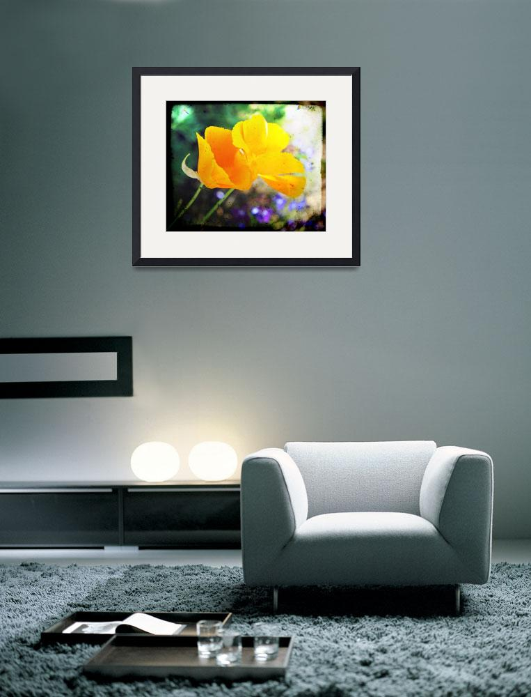 """""""Double the California Poppies&quot  (2010) by TheHiddenStudio"""
