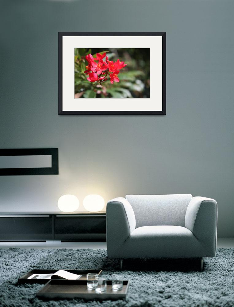 """""""Flower time""""  (2012) by Albertphoto"""