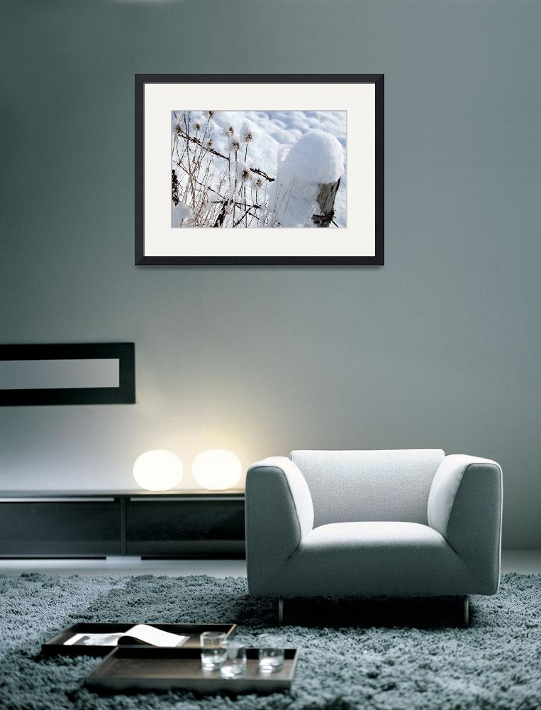 """""""First Snow&quot  (2008) by craglynn"""