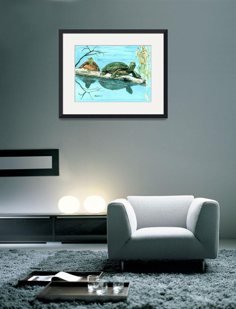 """""""Turtles&quot  (2011) by ClotheslineArt"""