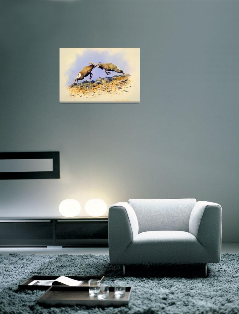 """Big Horn Sheep Head to Head""  by ArtLoversOnline"