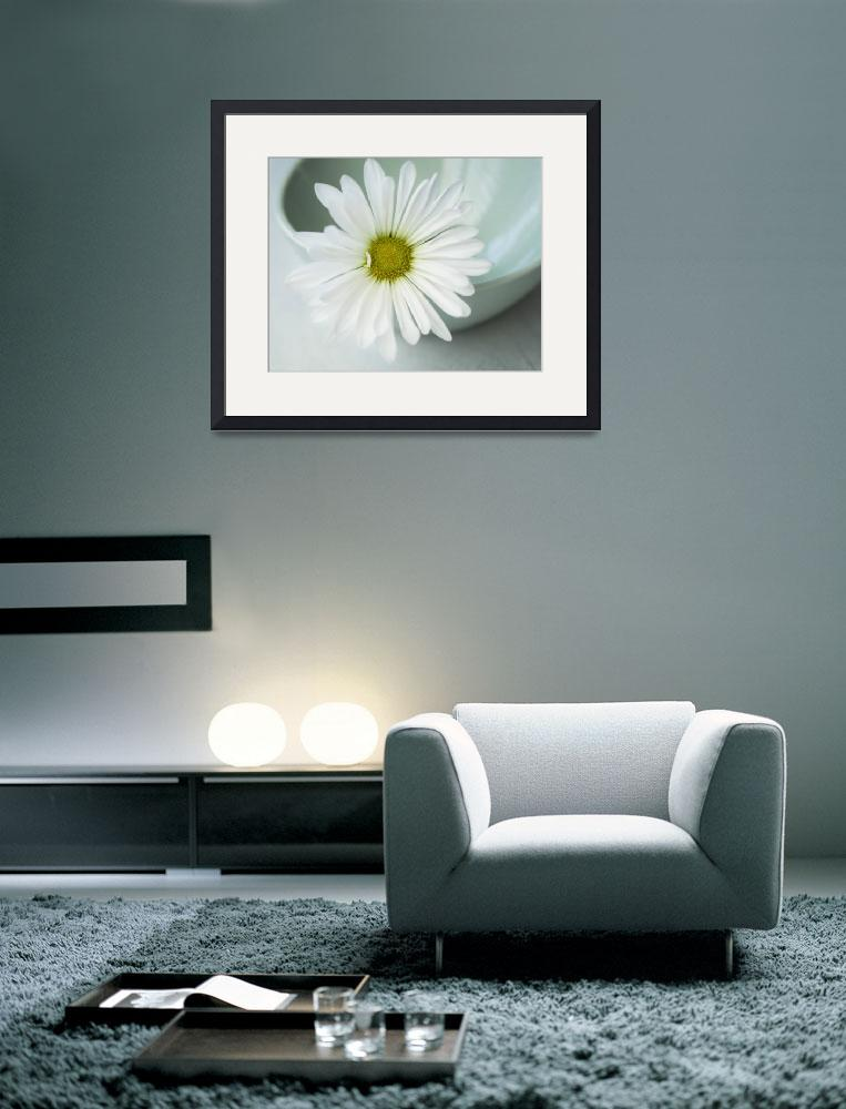 """""""White Daisy in a mint green bowl&quot  (2014) by JesusIsMySavior"""
