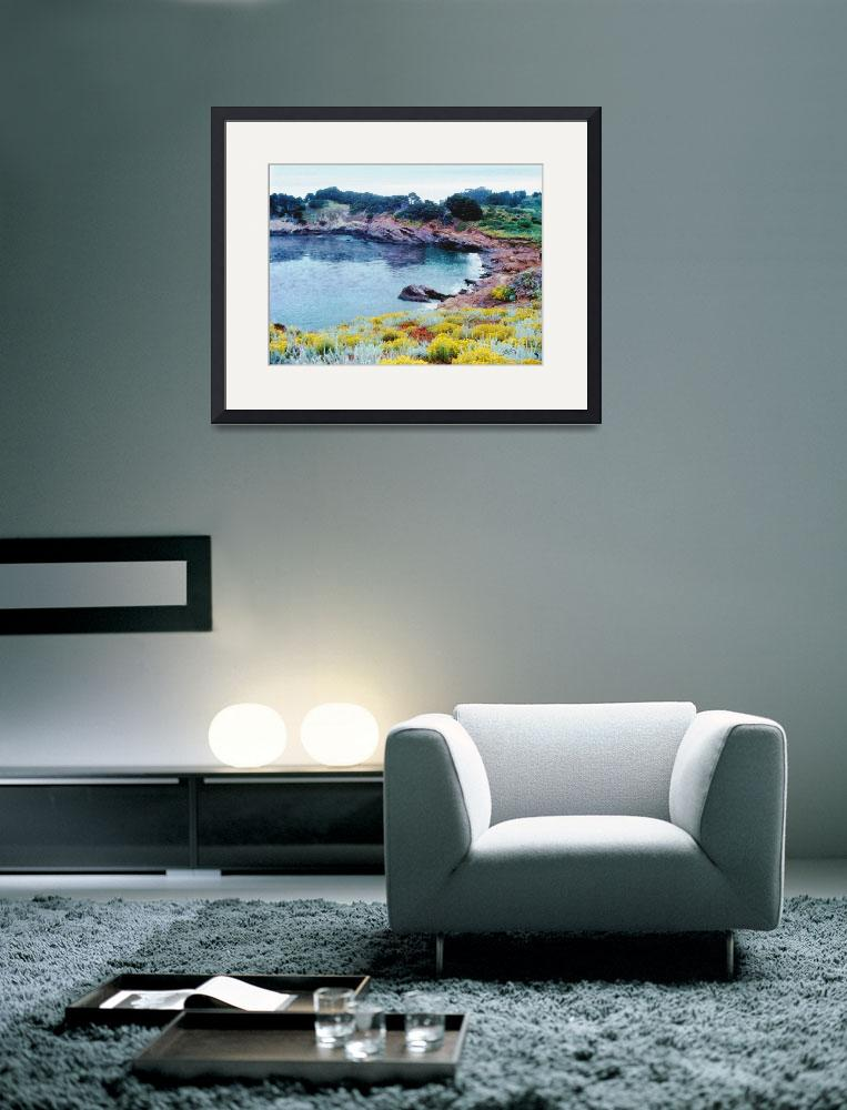 """""""Point Lobos&quot  (2007) by sboyle"""