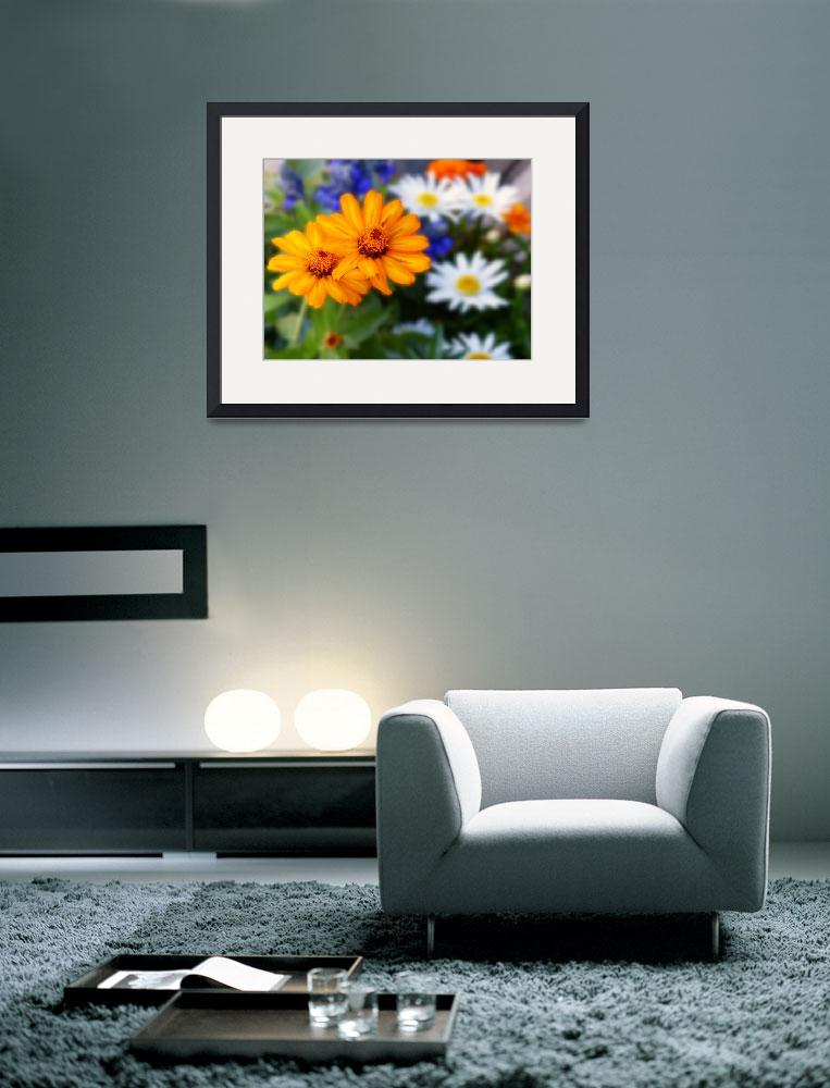 """""""Two Orange Flowers Blurry Background P1080404""""  by almarphotography"""