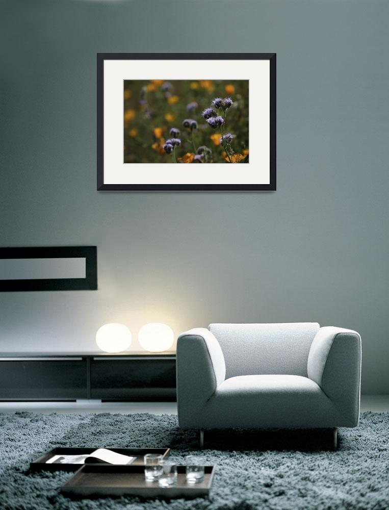 """""""Lavender Flowers on A Green Background with Orange&quot  by EnlightenedFellow"""