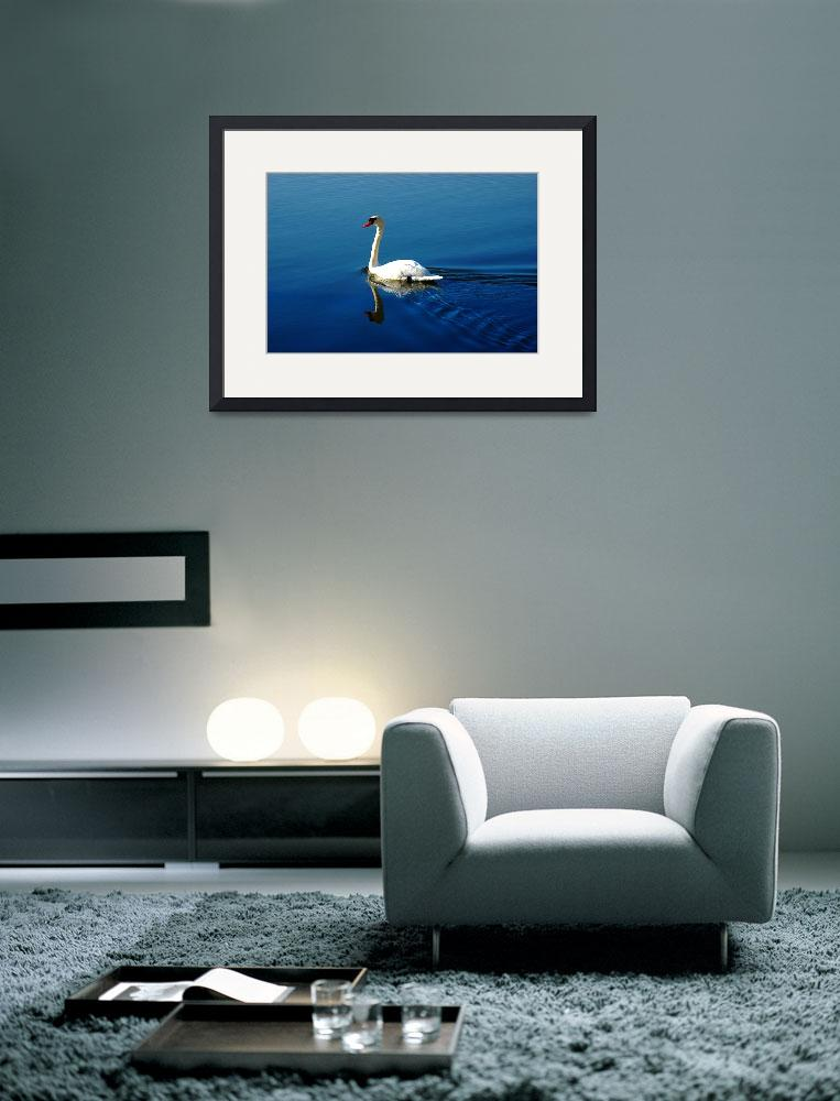 """""""Swan&quot  (2007) by ldfranklin"""