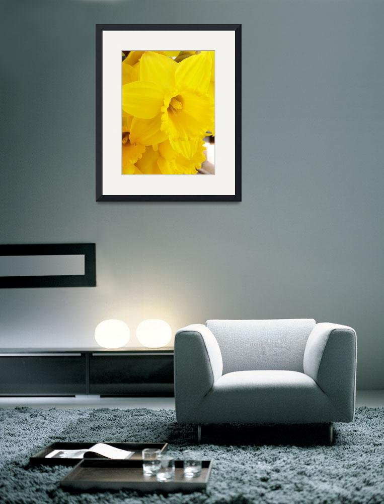 """""""Fanfare of Daffodils""""  (2007) by justbyjulie"""