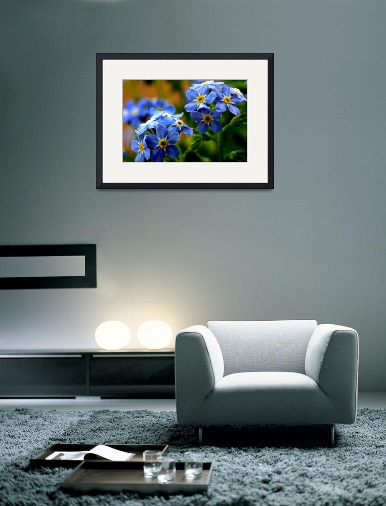 """""""WOOD-FORGET-ME-NOT BLUE FLOWER BOUQUET&quot  (2010) by photographybyryankelly"""