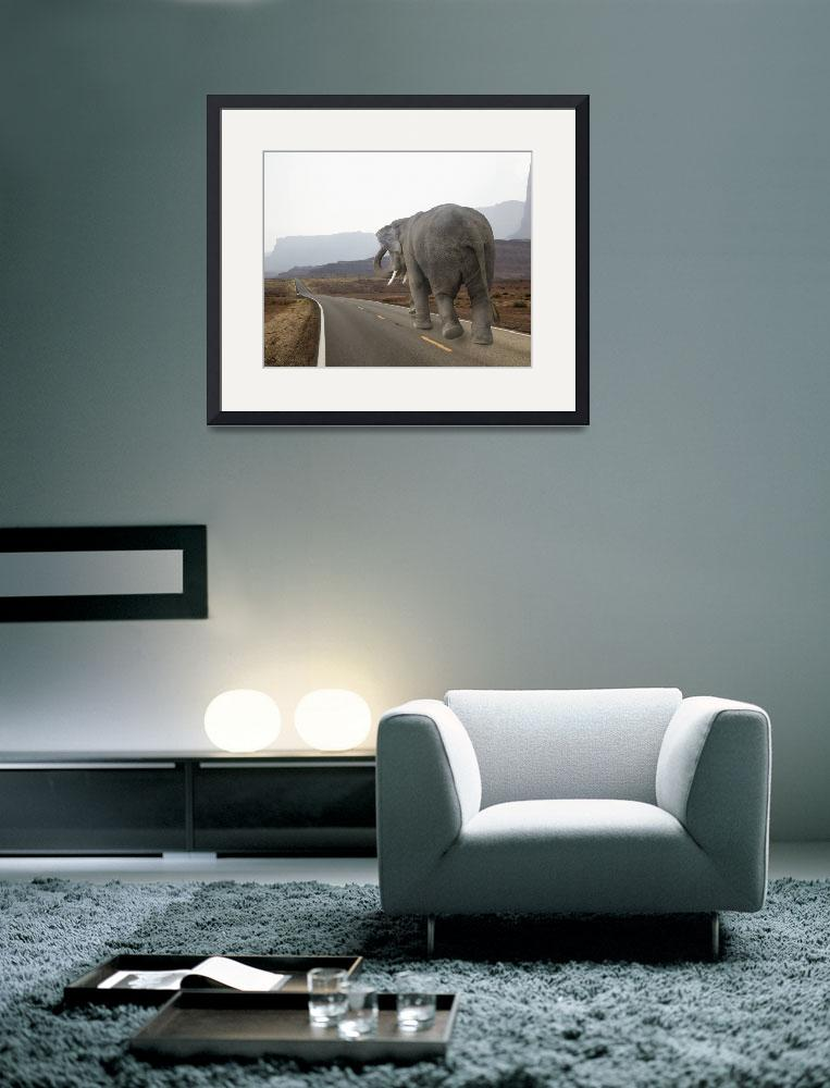 """""""Photo of a tired elephant walking the long road""""  (2010) by StephanieDRoeser"""