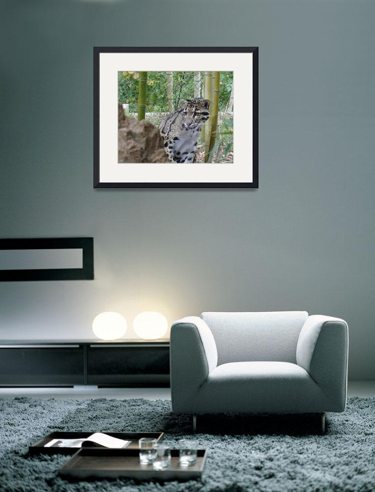 """""""Clouded Leopard&quot  by gpage"""