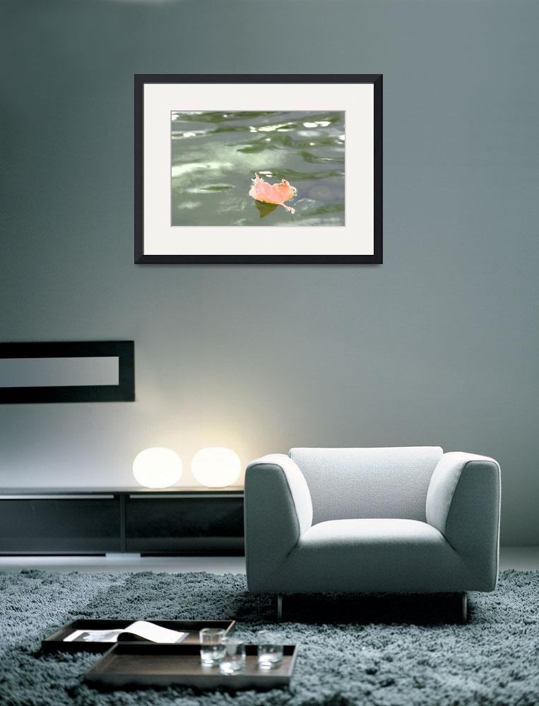 """Leaf on Lake&quot  (2011) by aicramphoto"