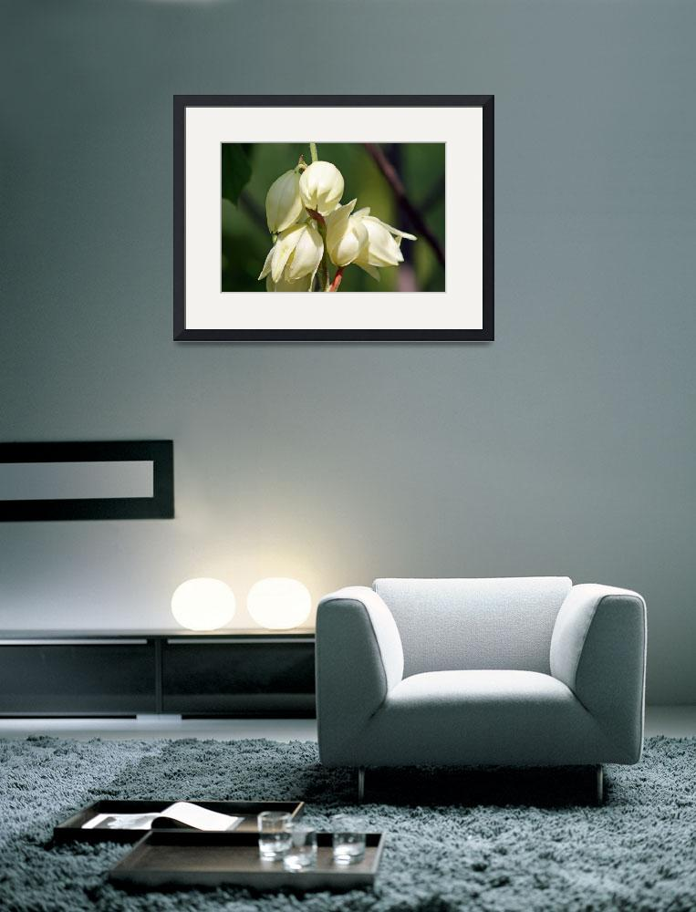 """""""Flowers of a Yucca Plant&quot  (2012) by KsWorldArt"""