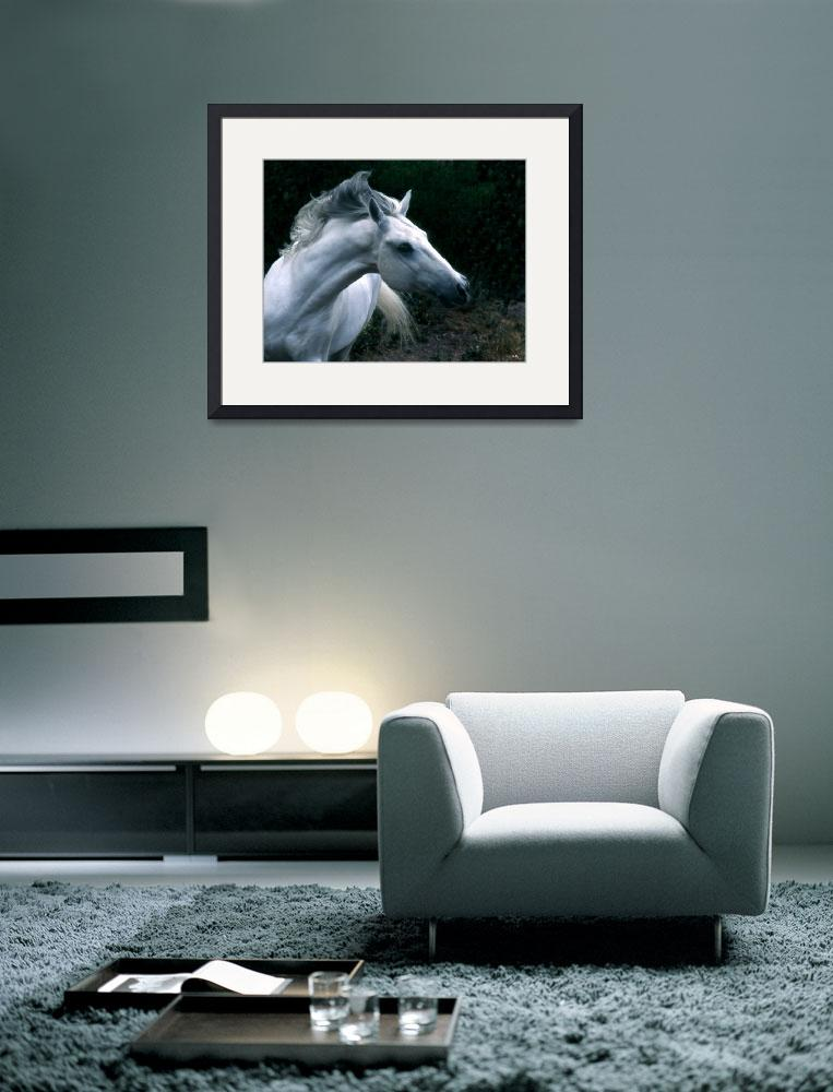 """""""Wild Horse&quot  by LynnR"""