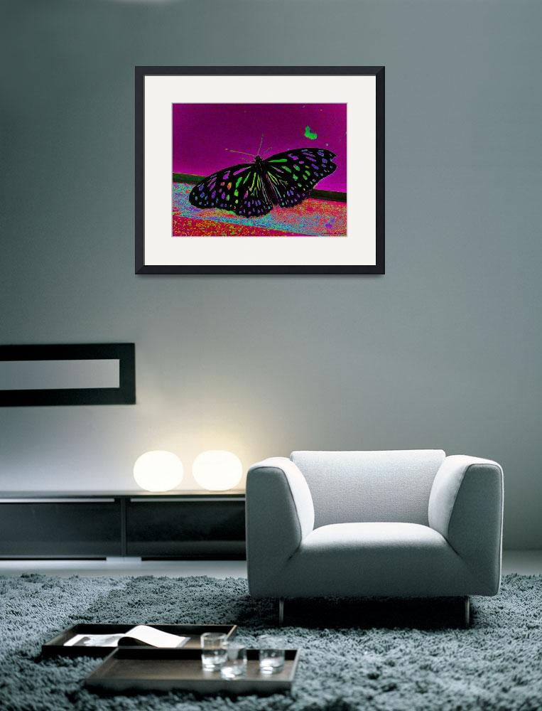 """""""Crayon Butterfly&quot  (2011) by Kimmary"""