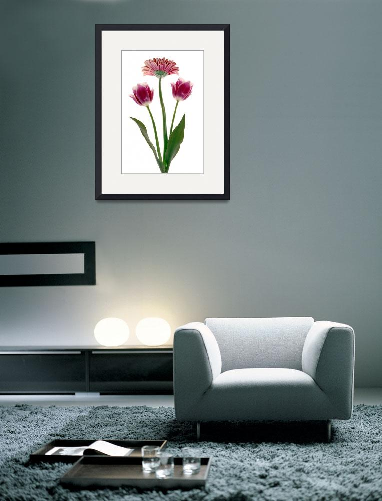 """""""Three Flowers&quot  (2010) by RussMartinPhotography"""