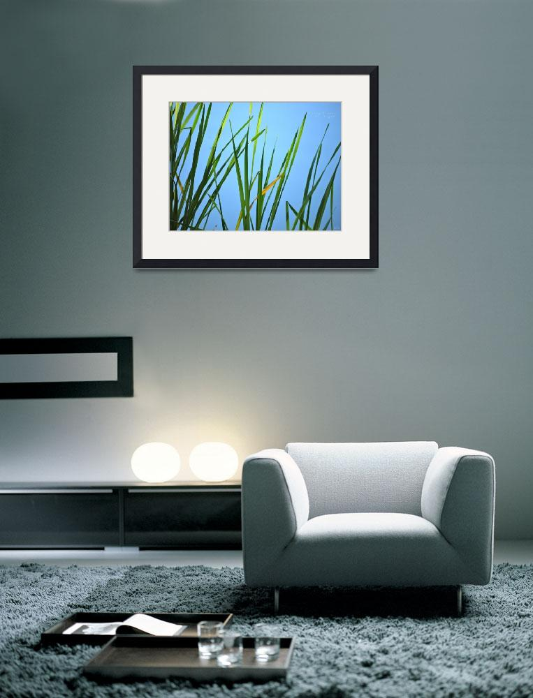 """""""Simplicity""""  (2011) by HarryLipson"""