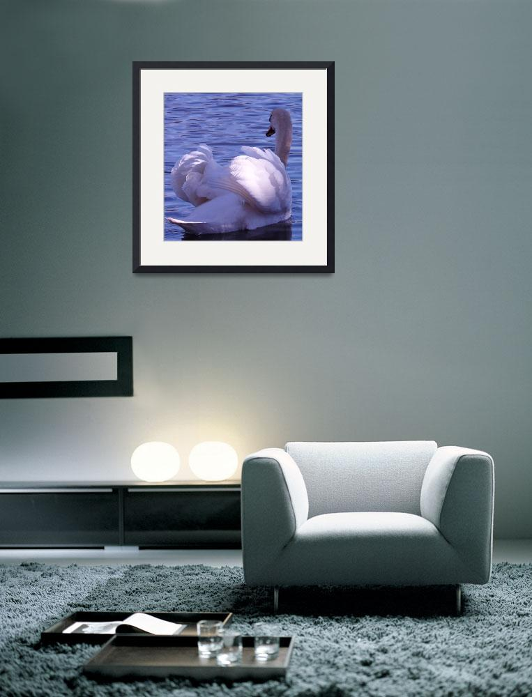 """""""swan&quot  (2013) by gallerymay"""
