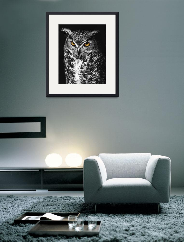 """""""Great Horned Owl Spot Color Black and White&quot  by jimcrotty"""