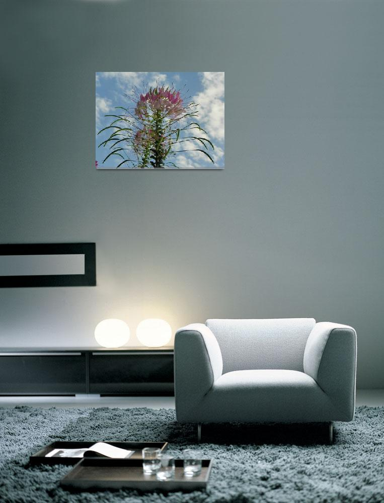 """""""Blooming flowers under the sunshine&quot  (2012) by vpicks"""