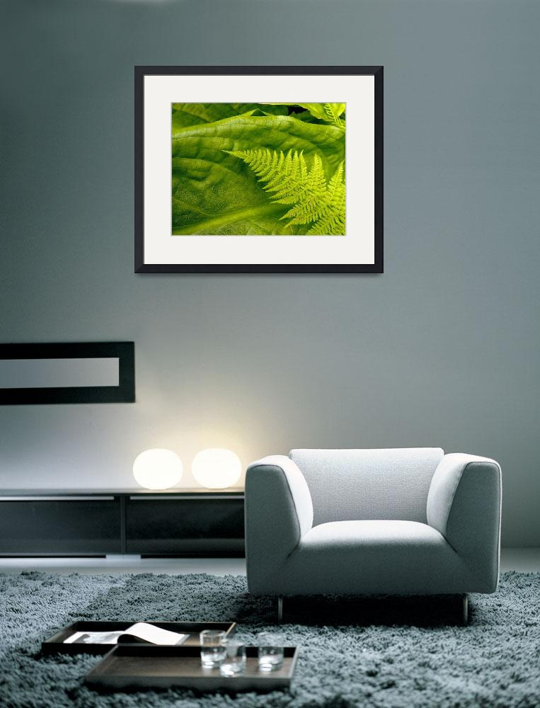 """""""Study in Green&quot  (2009) by SederquistPhotography"""