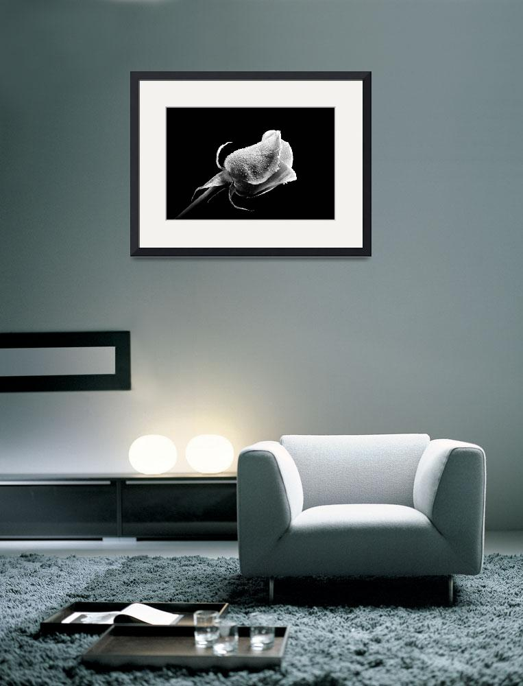 """""""Black and white beautiful flower""""  by Art_by_Lilia"""