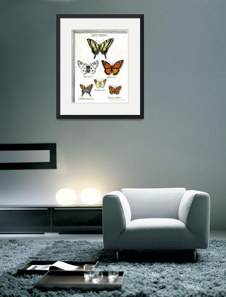 """Butterfly Collection #1&quot  (2002) by revelation_art_studio"