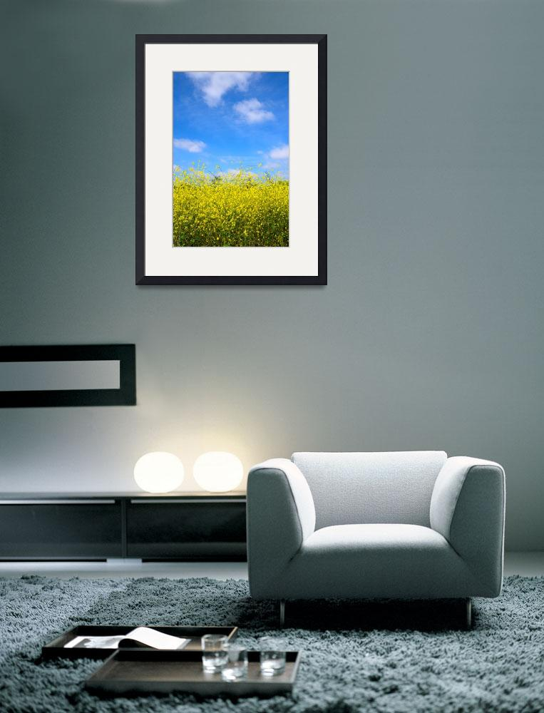 """""""Mustard Sky&quot  (2011) by timothyoleary"""