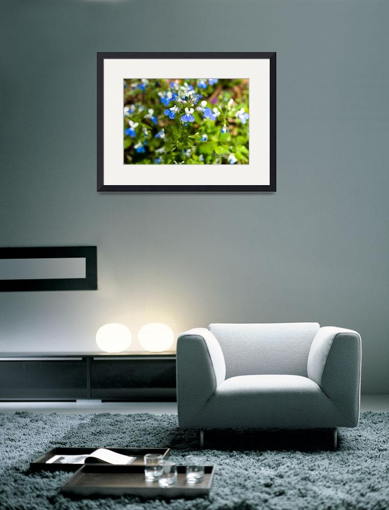 """BLUE-EYED MARY&quot  (2010) by tricia"