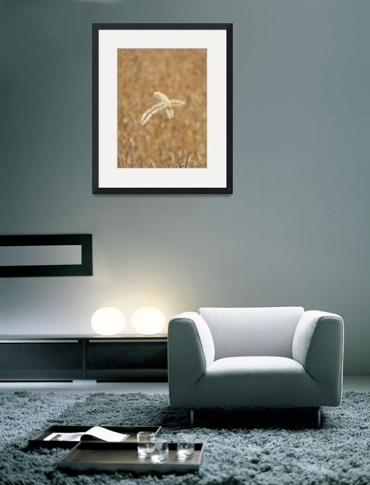 """""""Wheat&quot  (2010) by Tallulah"""