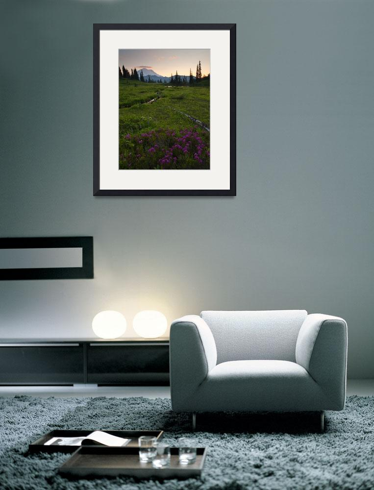 """""""Mountain Heather Sunset&quot  (2009) by Dawsonimages"""