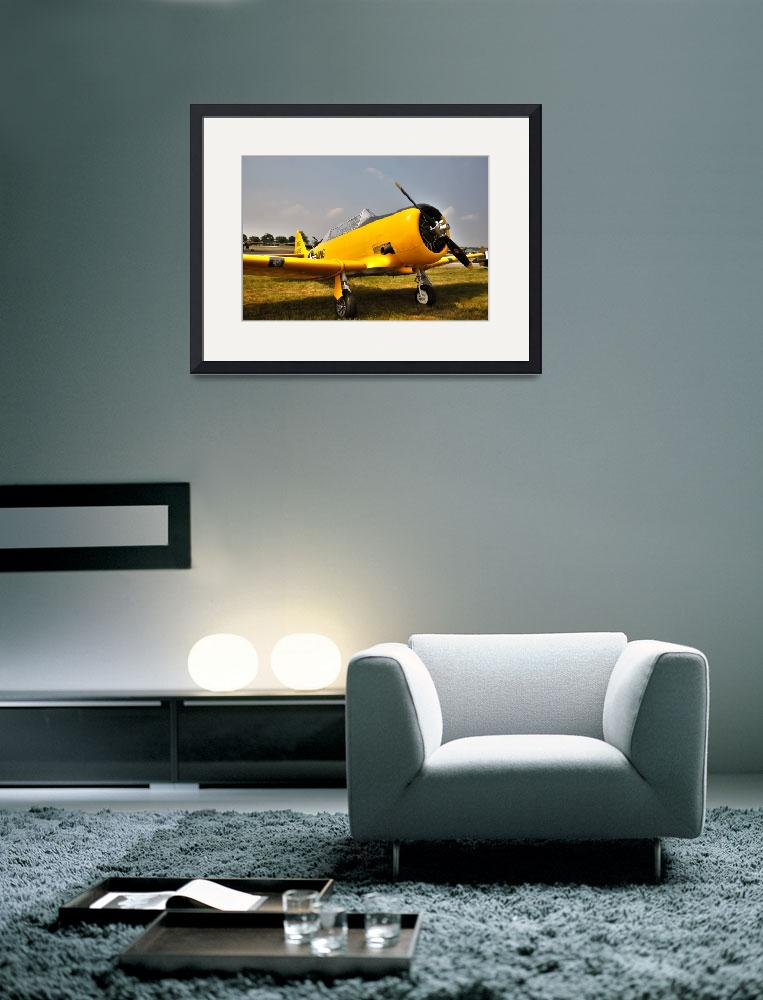 """""""T6 - Texan&quot  (2010) by Paul_Rumsey"""