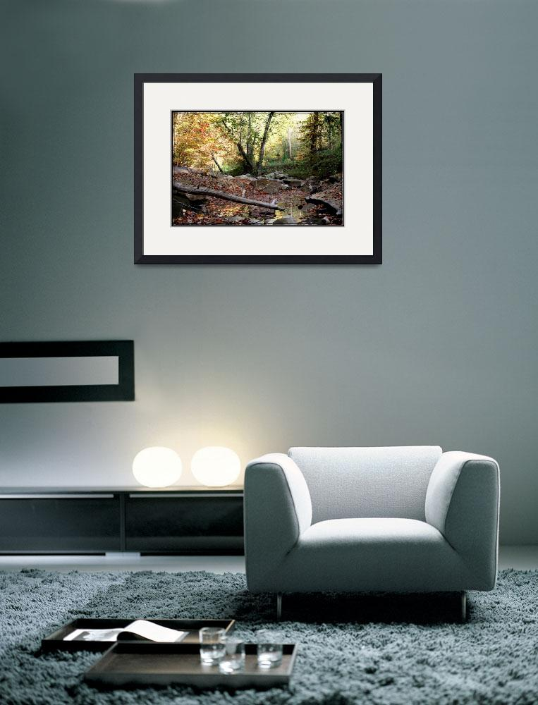 """""""creek bed in the fall&quot  by sherryswest"""