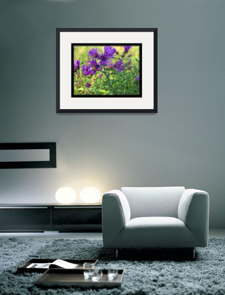 """""""Purple wild flower and bee&quot  by sherryswest"""