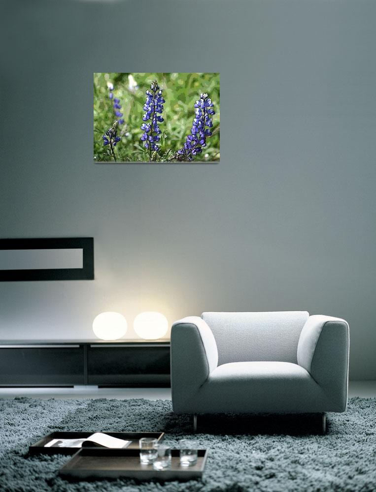 """purple flowers&quot  by wondemrombb"
