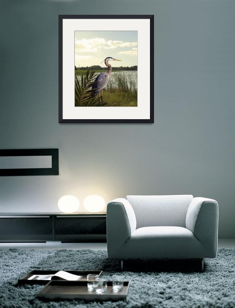 """""""Great Blue Heron in the Bulrushes&quot  (2010) by spadecaller"""