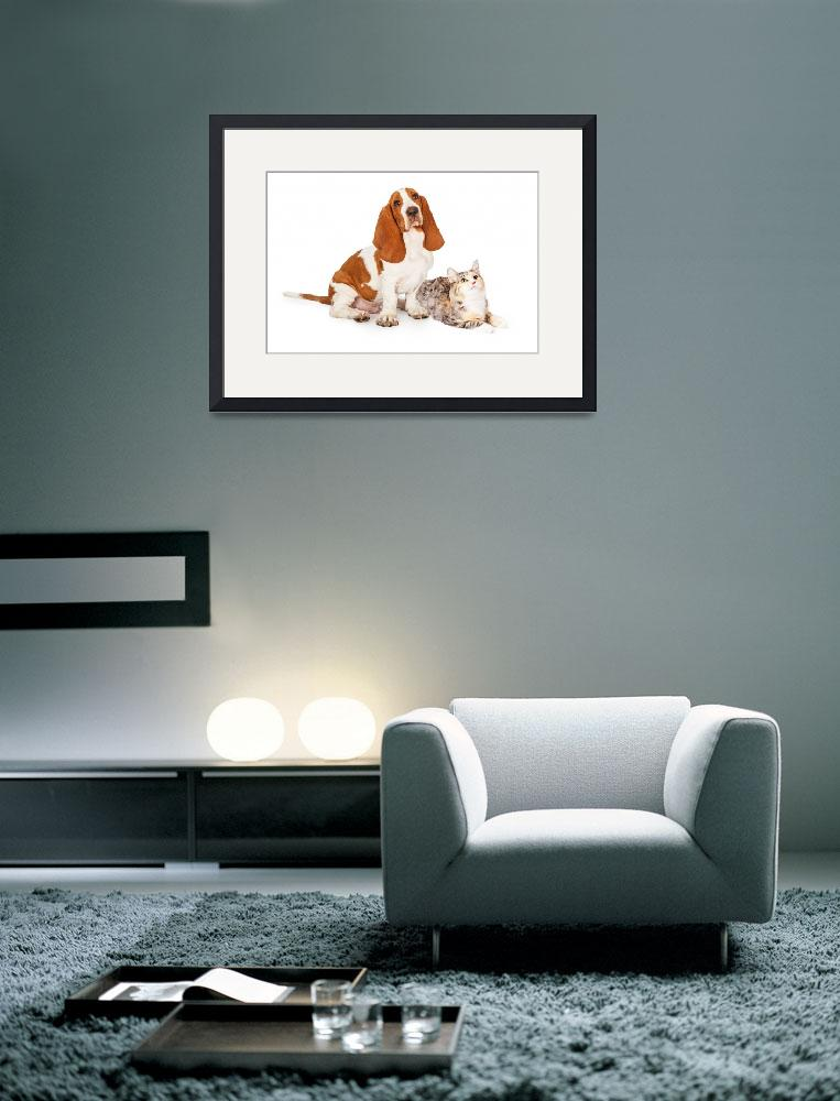 """""""Basset Hound Dog and Calico Cat Together&quot  (2016) by ADogsLifePhoto"""