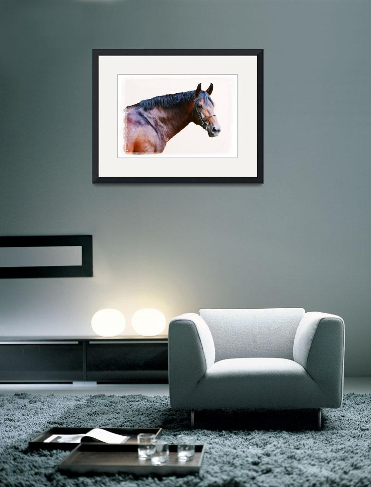 """""""Cleveland Bay Horse&quot  (2008) by PaintingPony"""