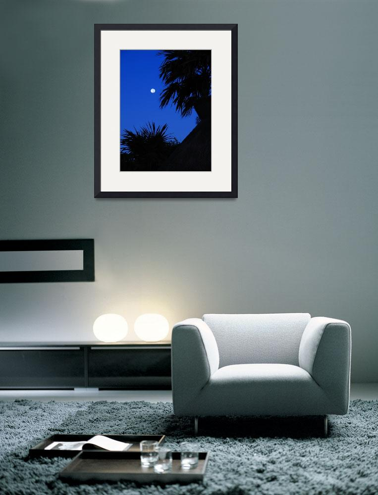 """""""Mexican Moon""""  (2011) by andreifilippov"""
