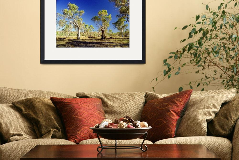"""""""Alice Spring Trees&quot  (2011) by biriart"""