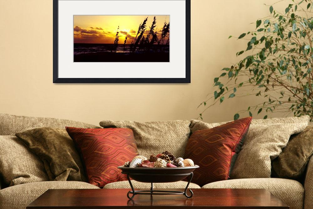 """""""Seaoats at Sunrise""""  (2006) by rayjacque"""