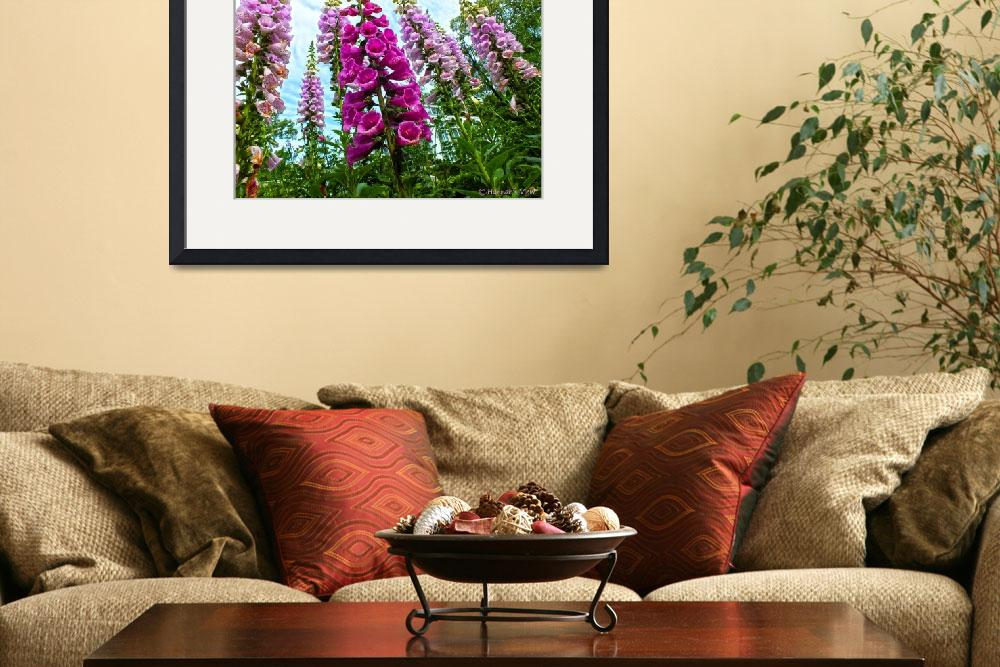 """""""Foxgloves!!!&quot  (2013) by hannahsview"""