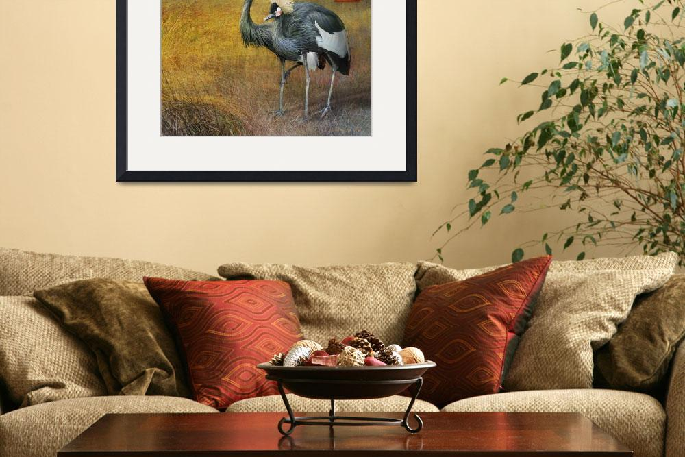 """crowned cranes""  (2011) by rchristophervest"