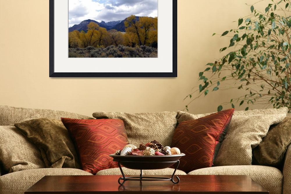 """""""fall on the Shoshone&quot  (2007) by BillsPhotos"""