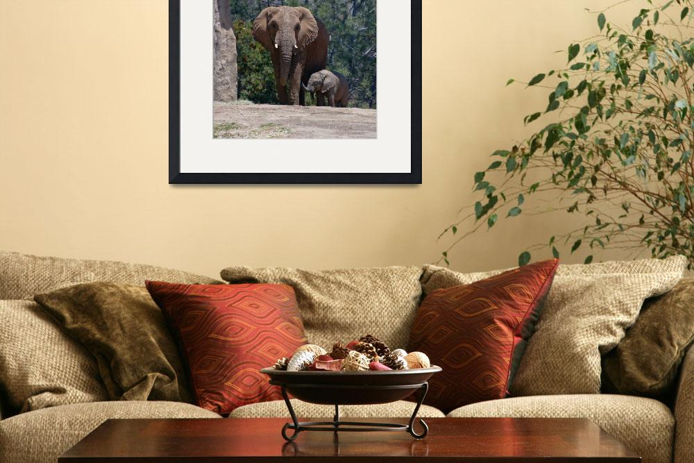 """""""Mother and Baby Elephant&quot  (2011) by RobinCowles"""