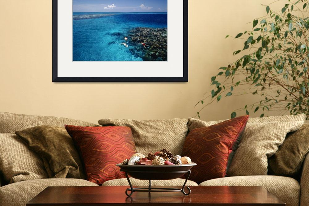 """""""High angle view of three men snorkeling in the se&quot  by Panoramic_Images"""