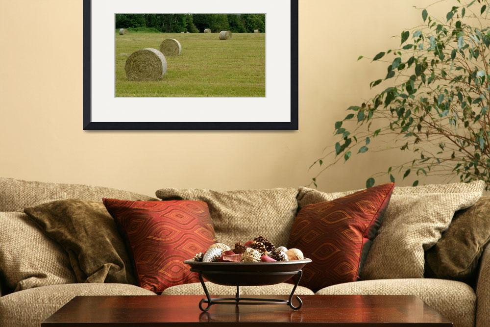 """""""Bails of Hay&quot  (2008) by staplesphoto"""