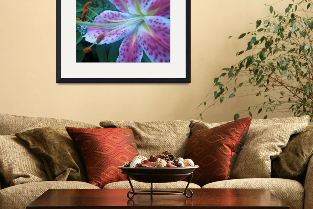 """Muted Red Spotted Lily&quot  (2008) by willis-prints"