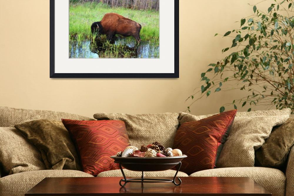 """""""Bison at Dusk&quot  (2010) by HYD"""