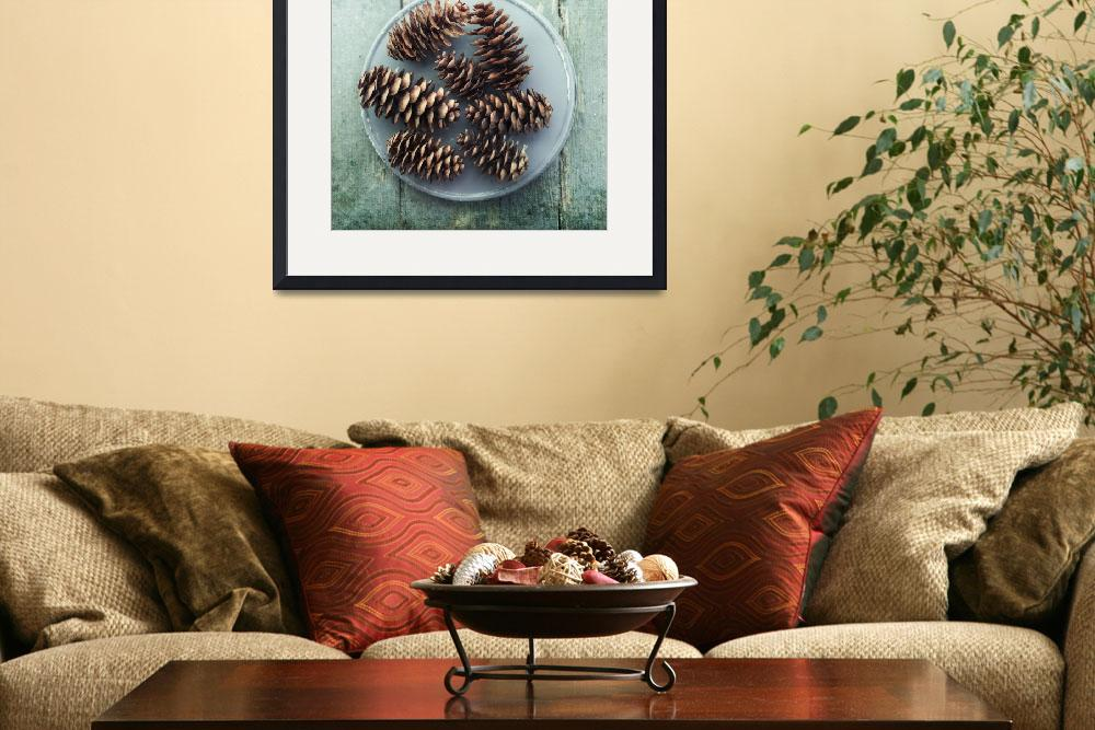 """""""still life with seven pine cones""""  by Piri"""