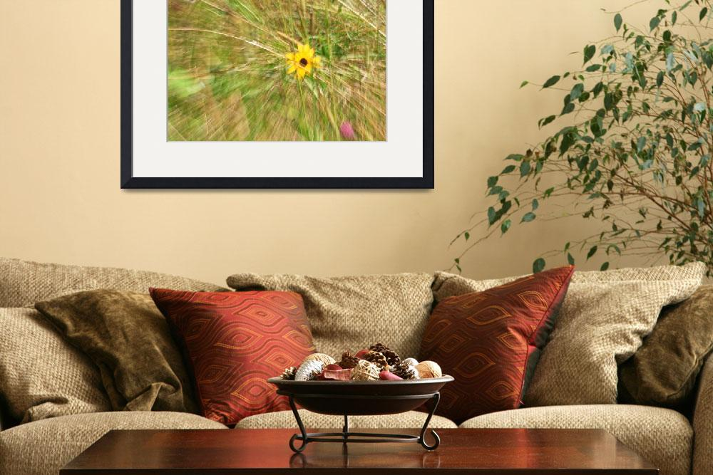 """""""Wildflower Abstract""""  (2012) by shelshots"""
